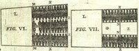 Diagram of the slave ship 'The Brookes'